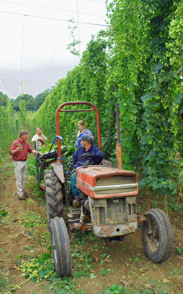 Hop farm boss Bill Biddell (in check shirt) and hop pickers